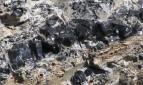 Eventi - Escursione al Parco dell'Ossidiana di Conca Cannas - Masullas - Oristano