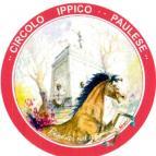 Eventi - Palio degli asini e dei cavalli locali - Paulilatino - Oristano